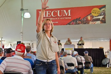 Mecum auction assistant