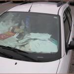 car-hoarding-16