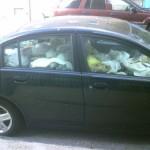 car-hoarding-4