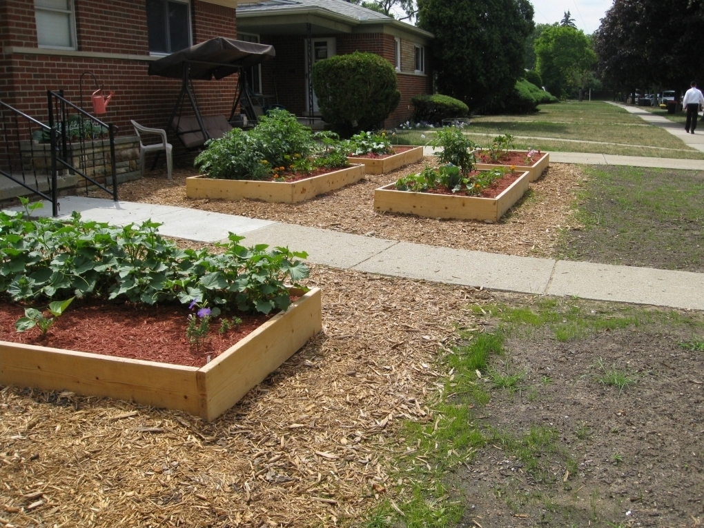 The Oak Park veggie garden thats stirred up a lot of controversy.